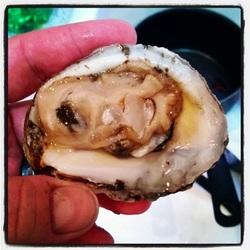 el-guapo-cucumber-oysters.jpg