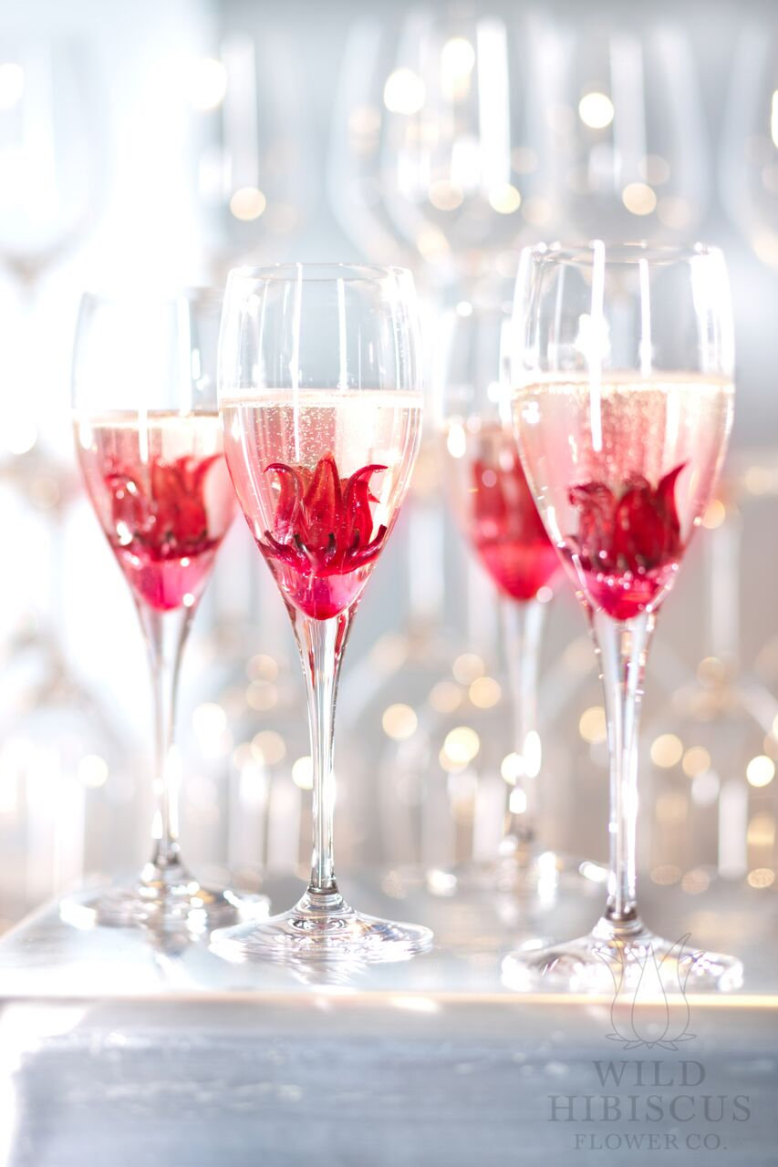 Wild hibiscus recipes samoras fine foods classic wild hibiscus champagne cocktailg izmirmasajfo Image collections